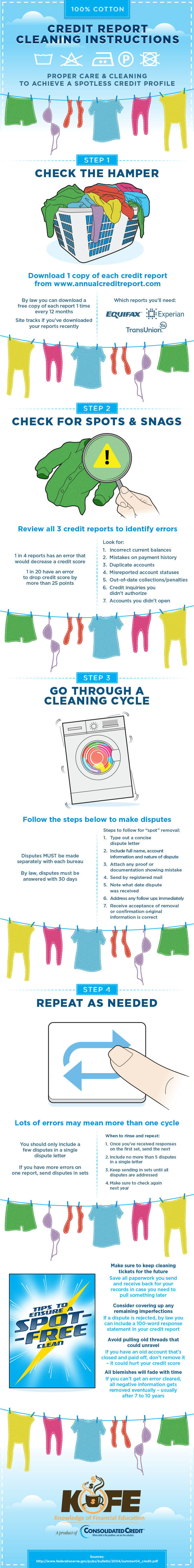 Credit Report Cleaning Instructions infographic