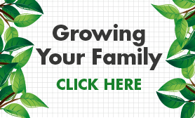 Infographic - Growing Your Family